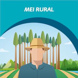 MEI Rural