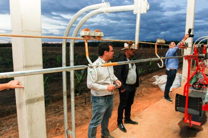 Colheita mecanizada com cabos aéreos de metal que suportam até 150 cachos de banana, o equivalente a três toneladas.