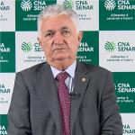 Mário Antônio Pereira Borba