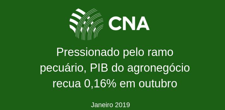 Pressionado pelo ramo pecuário, PIB do agronegócio recua 0,16% em outubro - Por: Superintendência Técnica da CNA e Centro de Estudos Avançados em Economia Aplicada