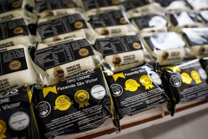 Diplomatas conhecem fazenda de búfalos premiada por melhor queijo do Brasil